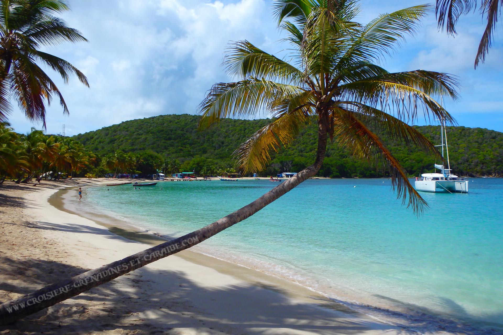Mayreau, Salt Whistle bay, Croisiere Grenadines, catamaran Grenadines