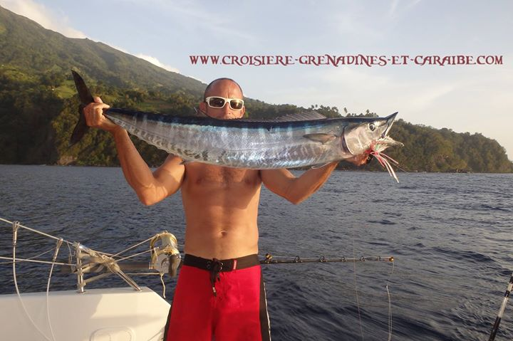 Wahoo, pêche au gros, Grenadines