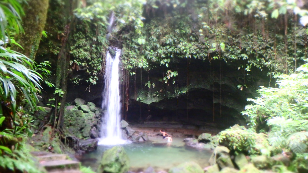 Emerald pool , Croisiere Dominique