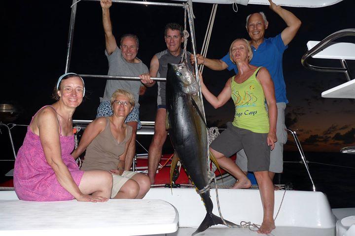 Pêche au gros, Pêche thon