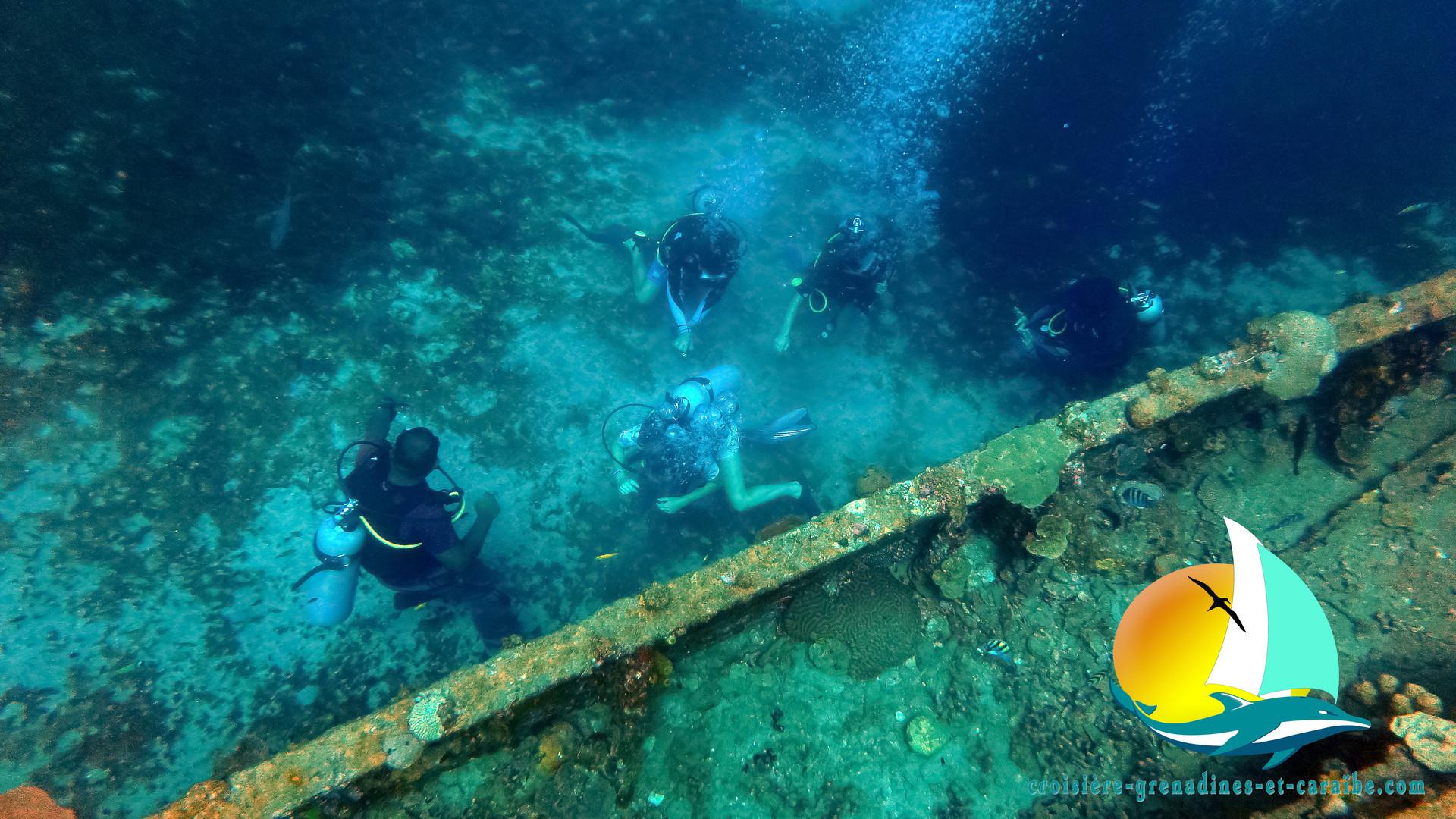 Plongée sous marine, épave sous marine, ste Lucie. dive