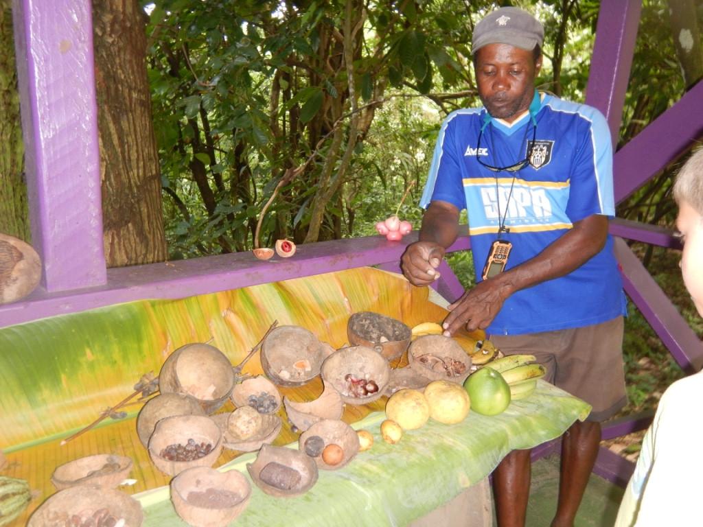 Jardin botanique, ste lucie, soufriere, croisiere Grenadines