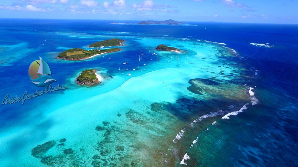 Tobago cays, barrière de corail,drone grenadines, croisiere grenadines, catamaran Grenadines
