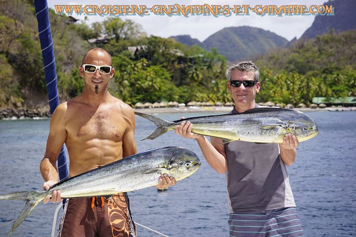 pêche en Mer, croisiere Grenadines