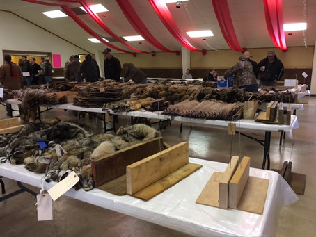 2017 Fur Auction Highlights