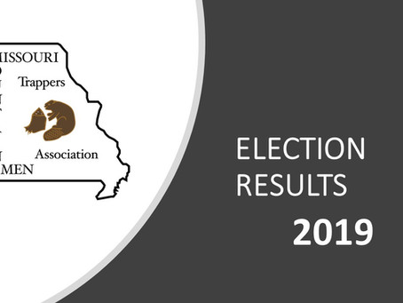 2019 MTA Election Results