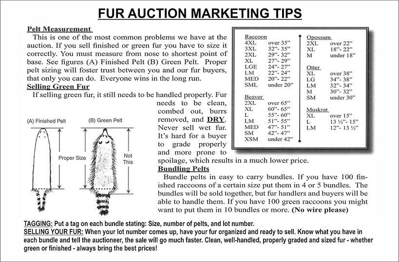 Fur auction marketing tips.jpg