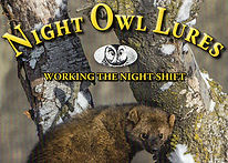 Night owl banner.jpg