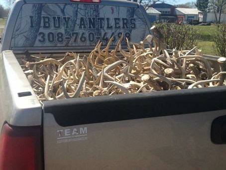 MTA District 6 Shed Antler Drive