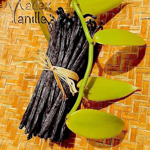250Gr Vanille Gourmet - Origine : Madagascar