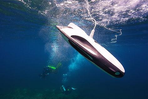 PowerRay Diving Companion
