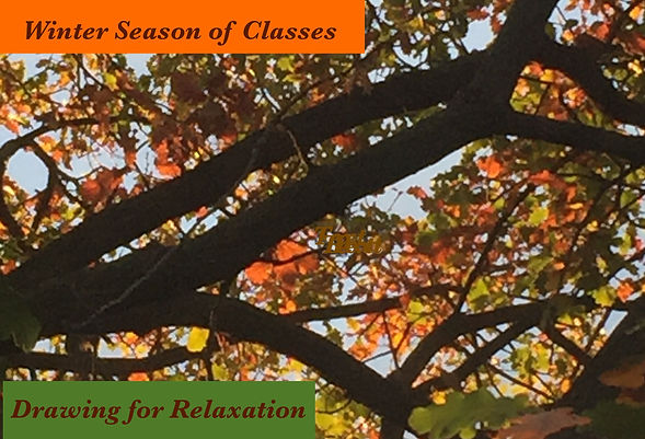Oak tree promo image.jpg