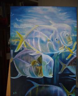 Aquarium_edited