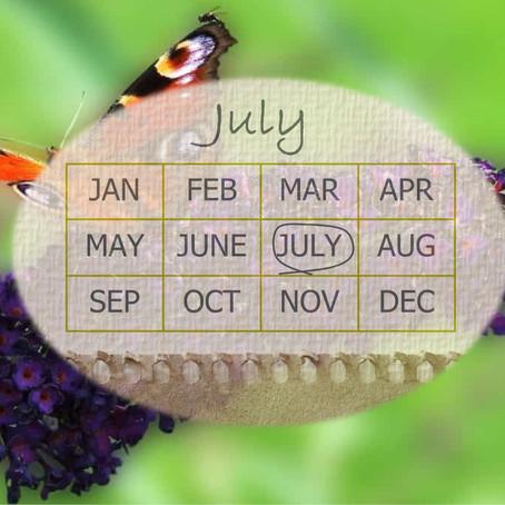 Your Garden In July