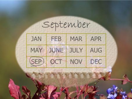 Your Garden In September