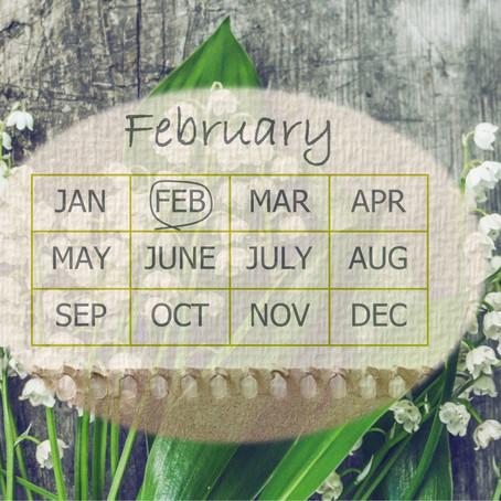 Your Garden In February