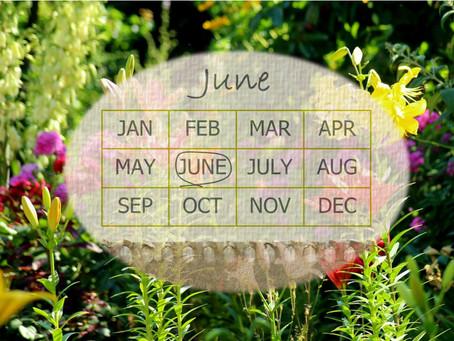 Your Garden In June