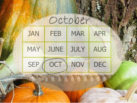 Your Garden In October