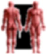 Physiotherapy - العلاج الطبيعي