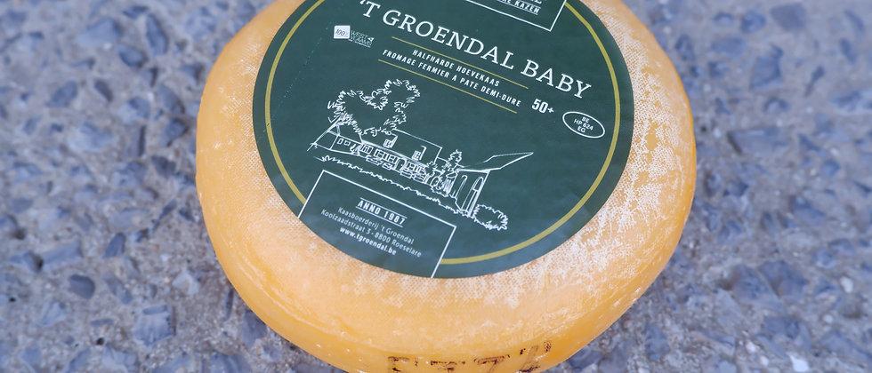 "Halfhard hoevekaasje Baby 't Groendal by ""familie Deweer"" - ± 850 gram"
