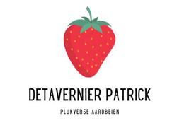 Detavernier Patrick