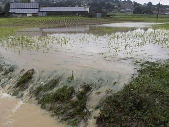 LANNEPLAA reconnue sinistrée au titre des calamités agricoles suite aux inondations des 12 et 13 jui