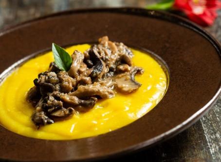 Segunda sem carne: melhores alternativas para um prato saboroso