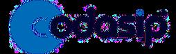 Codasip_Logotype_Full_384.png