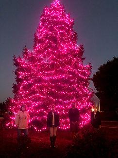 pink%20tree2_edited.jpg