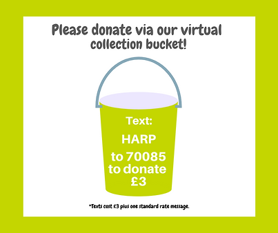 Virtual Collection Bucket template (1).p