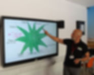 HARP staff uses interactive whiteboard for training