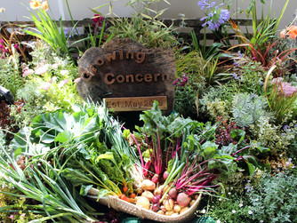 HARP residents display at Flower Festival