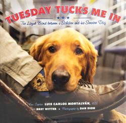 Tuesday Tucks flat