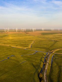 Marsh and Windturbines