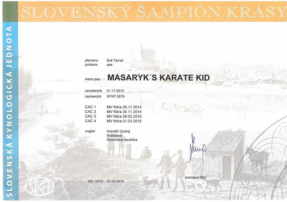 Masaryk's Karate Kid