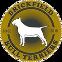 Brickfield Bull Terriers