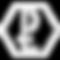 P+L logo white.png