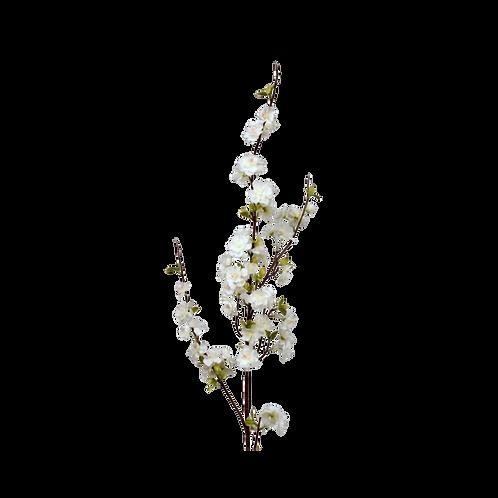 Blossom White 125cm