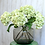 Thumbnail: Green Dried Hydrangea