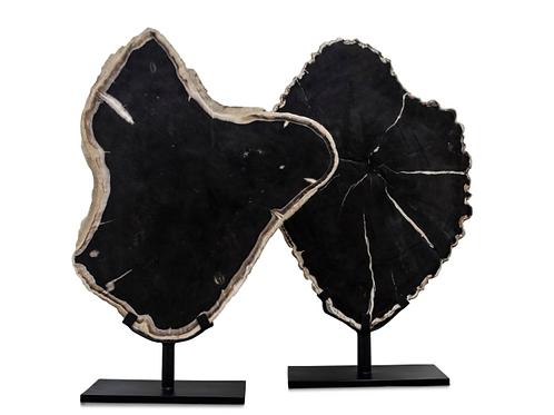 PETRIFIED WOOD SLICE XL 76cm