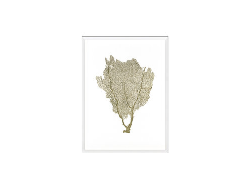 Gold Foil Sea Fan I
