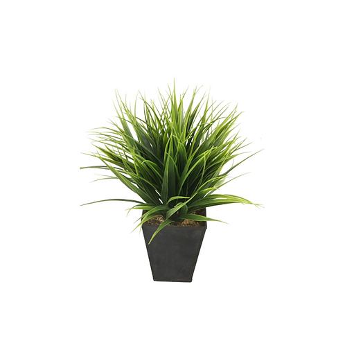 Grass Bush 30cm in 10cm Zinc Pot