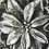 Thumbnail: Serafina Christmas Tree Silver