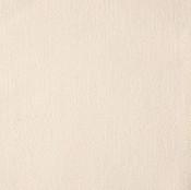 Canvas Lace