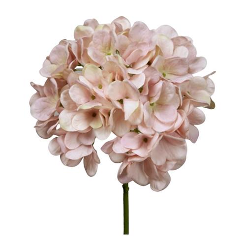 Hydrangea Pink 50cm