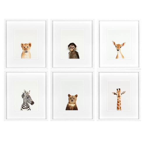 Animal Prints Set of 6