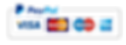 paypal-hd-png-hd-1080p-tiny-camera-is-a-