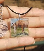 Add-A-Picture Necklace