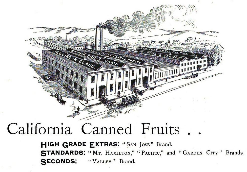 Drawing of San Jose Fruit Packing Co. Circa 1890s. vasonabranch.com