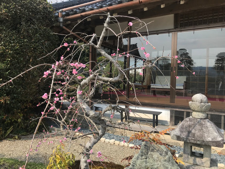 観音寺にホームページができました!!